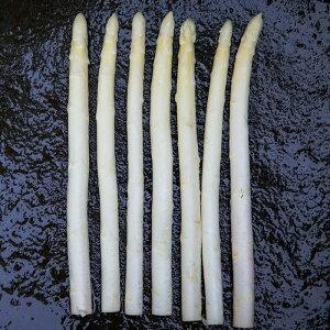 岩手県産ホワイトアスパラ「白い果実」