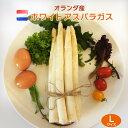 【od marche】ホワイトアスパラガス オランダ産 Lサイズ1000g