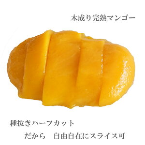 マンゴー(木成り完熟) ハーフカット 1Kg 最高水準 カラパオマンゴー 冷凍マンゴー  冷凍フルーツ 冷凍果物