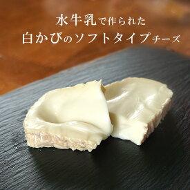 白カビ チーズ カザティカ ディ ブファラ 約80g 3~5週間熟成 イタリア産 毎週火・木曜日発送