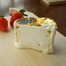 白カビ チーズ シャウルス ハーフ 約125g フランス産 毎週火・木曜日発送