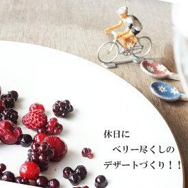 ミックス ベリー1kgパック 6種類の完熟ベリーいちご ブラックベリー(桑の実)グリオットチェリー レッドカラント(赤すぐり)ラズベリー(木いちご)ブルーベリー 冷凍フルーツ