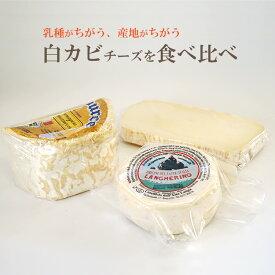 乳種や産地が異なる、白カビ チーズ 食べ比べ セット(カザティカ、ランゲリーノ、シャウルス ハーフ)送料無料 毎週火・木曜日発送