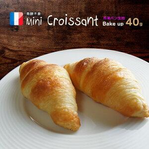 クロワッサン ベイクアップ 40g 65個 冷凍 パン生地 フランス産 業務用 【袋入り】