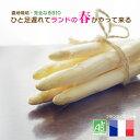 「空輸」ホワイトアスパラガスBIO フランス ランド産オーガニック野菜 約1000g 毎週金曜日入荷 要予約