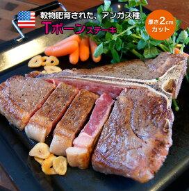 チョイス Tボーンステーキ 骨付きステーキ 厚み2Cm 500〜599g 塊肉 牛肉 ステーキ