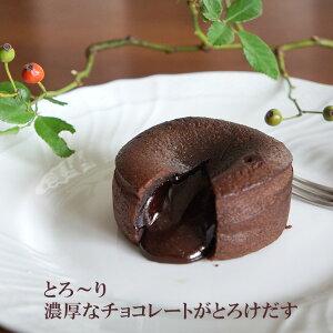 フォンダンショコラ 100g×2個 フランス産 冷凍ケーキ トレトールドパリ社製