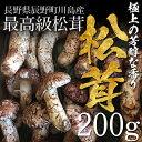 【販売開始】松茸 まつたけ 国産 200g 2〜5本 マツタケ 長野 産地直送 冷蔵 送料無料