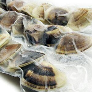 大はまぐり(ボイル蛤) 冷凍ハマグリ 1Kg(約12個) 九十九里産