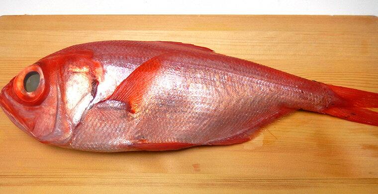 【築地仲買が築地場内で買付け!】天然 金目鯛 約1.0〜1.2kg