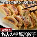 宇都宮 幸楽 こうらく冷凍生餃子5人前×2個 送料無料 【楽ギフ_のし】
