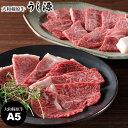 A5ランクの大和榛原牛赤身 上カルビ・モモ肉詰合せ うし源 高級肉 焼肉 上カルビ150g 霜降りモモ150g 送料無料