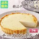 ■送料無料■チーズアントルメ7号【楽ギフ_のし】