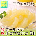 母の日 【送料無料】 完熟ゴールデンオロブロンコ(特選大玉)5玉