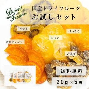 送料無料 各種ドライフルーツセット ドライ レモン 清見オレンジ はっさく 古城梅 キウイ 国産 ドライフルーツ お試しセット 100g (20g x 5袋)