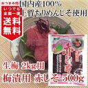 しそ 葉 しその葉国内産 赤しそ 500g × 1袋