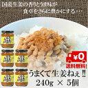 【送料無料】【吾妻食品】国産生姜使用うまくて生姜ねえ !!240g × 5個