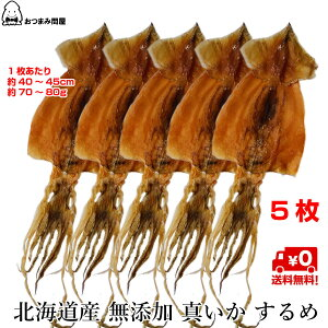 送料無料 北海道産 するめいか 真いか するめ 無添加 無塩 x 5枚 常温保存