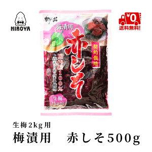送料無料 しそ もみしそ しその葉 国内産 赤しそ 梅漬用赤しそ 500g x 1袋 常温保存