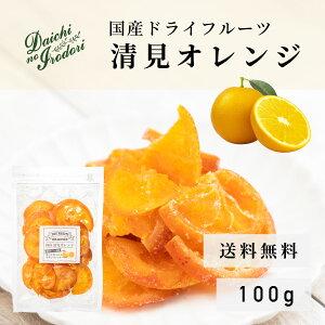 送料無料 ドライ オレンジ 果実 ドライフルーツ 国産 清見オレンジ 100g x 1袋 チャック袋入り