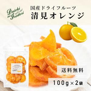 送料無料 ドライ オレンジ 果実 ドライフルーツ 国産 清見オレンジ 100g x 2袋 チャック袋入り