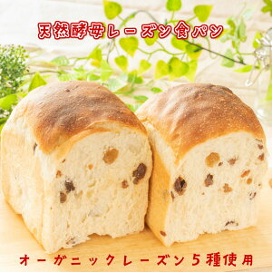 レーズン食パン1斤 北海道小麦 国産小麦 無添加 ホシノ酵母 天然酵母 天然酵母食パン オーガニックレーズン 食事パン もちもち しっとり 冷凍 ギフト 贈り物