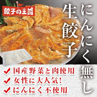 [餃子の王国]にんにく無し生餃子(17g×15個)にんにく不使用!