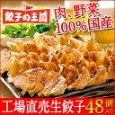 [餃子の王国]【決算セール10%OFF】工場直売生餃子48個(24個×2パック)