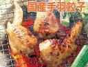 [餃子の王国]【国産手羽餃子 4本】あげても焼いてもおいしい!国産鶏手羽先に餃子のあんがつまってます