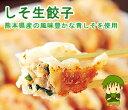 [餃子の王国]【しそ生餃子 60個】土づくりからこだわった中原温室の風味豊かなしそを使用