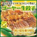 [餃子の王国]【ゴーヤー生餃子 15個】夏野菜の王様、ゴーヤーパワーをギュッと詰めた餃子です!
