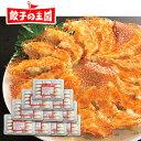 【送料無料】メガ盛り!黒豚生餃子150個!約20人前(15個×10パック)国産野菜に、九州産黒豚肉100%使用!熊本の自社…