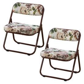 折りたたみ座椅子 ローチェアー 完成品 座面低め 正座が出来ない人用 和室 居間 玄関 仏間 集会 法要 釣り 観戦 軽くて折りたためるパイプ椅子 同色2脚組