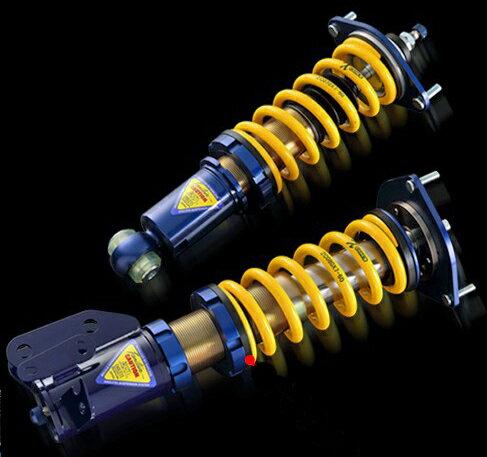 ENDLESS ZEAL Function PLUS10(A) 日産 ニッサン スカイライン GT-R BNR32用 品番:ZS101P10A【車高調】【自動車パーツ】エンドレス ジール ファンクション プラス10