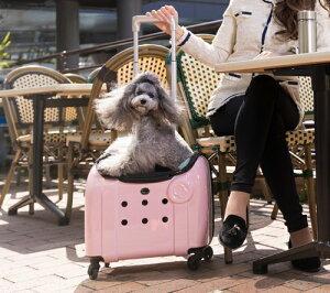 Rui&Aguri ペットキャリーケース ハードタイプ マットピンク 幅40×奥行25×高さ33cm ショルダーストラップ付(PK-029) 【ペット用品】 ルイ&アグリ 桃 お出かけ 旅行ハウス 車内ケージ 犬イヌ猫ネ