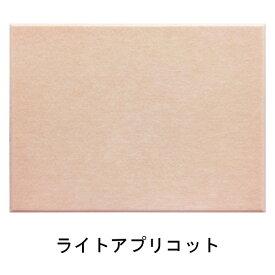 [代金引換不可]吸音パネル45C(8060)マグネット付(45度カットタイプ)[ブランド名:硬質吸音フェルトボードFelmenon][サイズ:800mm×600×10.5mm][カラー:ライトアプリコット][裏面マグネット付][数量:1カートン(12枚)]