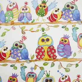 (Wrapping)- Quirky Birds WP560