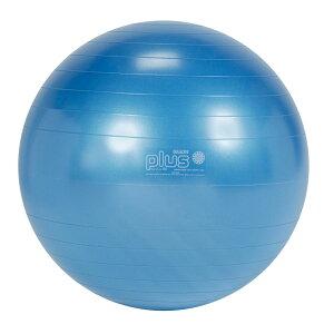 【Wアクションポンププレゼント】ギムニクPLUS65B 青色 バランスボール 65cm 送料無料