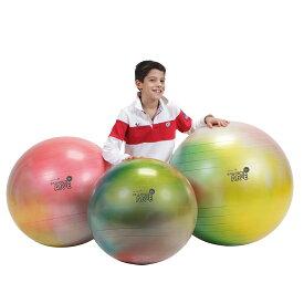 【Wアクションポンププレゼント】バランスボール 65cm アルテ65 マーブルカラー ギムニク 送料無料