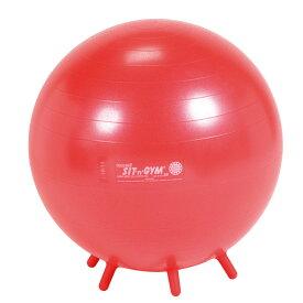 【Wアクションポンププレゼント】シッティング・ジム55 レッド バランスボール 55cm 送料無料