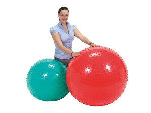 【Wアクションポンププレゼント】触覚ボール65 ギムニク(Gymnic) バランスボール 65cm イタリア レードラプラスチック社製 送料無料 LP-9761