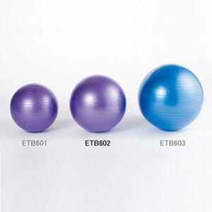 エバニュー(EVERNEW) バランスボール 65cm ノンバーストバランスボール65 ETB602