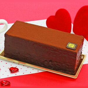 送料無料 完熟ショコラティーヌ 冷凍発送 ガトーショコラ チョコレートケーキ誕生日ケーキ パーティー お祝い 内祝い 出産 お祝い ご挨拶 お菓子 洋菓子 スイーツ 土産 贈り物※北海道別途