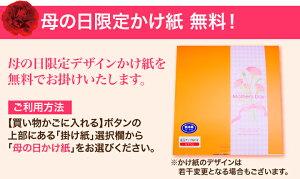 季節のかけ紙無料対応!