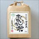 【新米 令和2年産】おやじの米 山形県鶴岡産 特別栽培米 雪若丸 白米 2kg