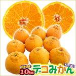 【送料無料】熊本県産デコみかん10kgデコポンと同じ品種(不知火)