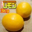 熊本・鹿児島県産レモン約3kg無農薬&ノーワックス