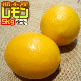 防腐剤不使用 国産レモン 5kg 防腐剤不使用 わけあり 熊本県産