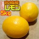 【あす楽】【無農薬&ノーワックス】宮崎県産 わけありレモン5kg
