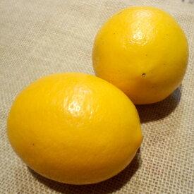 【超早割 予約商品】国産レモン5kg 農薬不使用 化学肥料不使用 防腐剤ワックス不使用 わけあり 九州産 ※ 無農薬 表示について 「無農薬」「無化学肥料」の表示は国のガイドラインにおいて平成19年4月より表示禁止となっております。